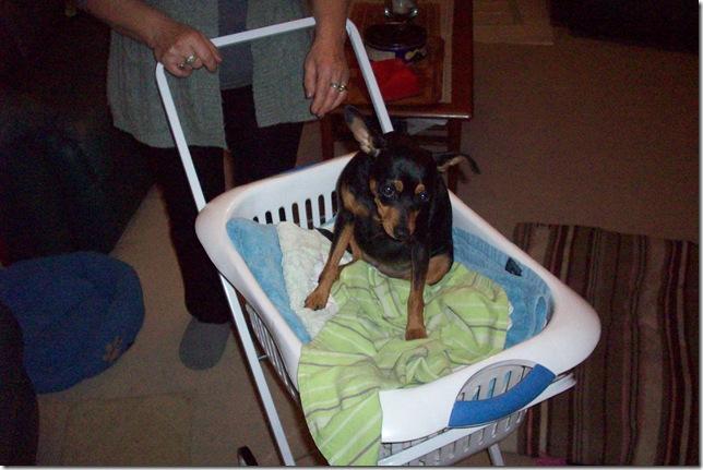 Aldi Folding Laundry Trolley 19 99 Alan Mackenzie S Blog